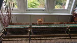 Cat and piano action